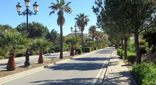 Avenida de las Palmeras – Cañadas del Parque