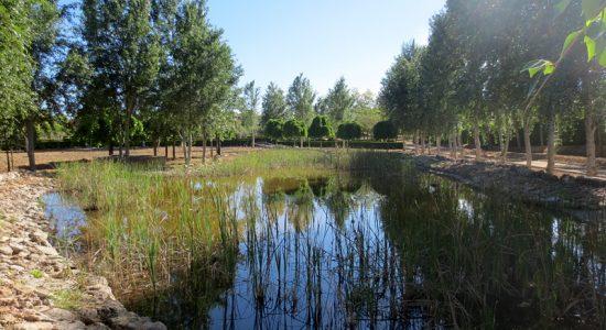 Zonas verdes – Cañadas del Parque