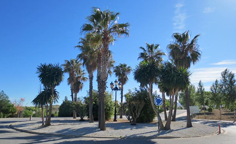 Avenida de La Palmeras - Cañadas del Parque